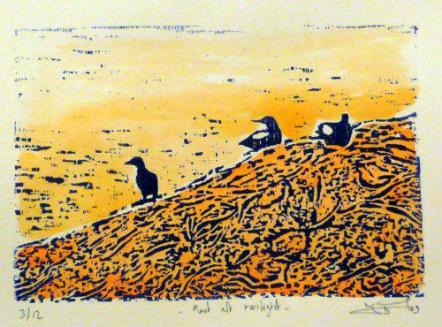 Dominique_birds